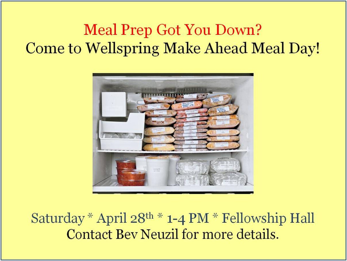 Wellspring Make Ahead Meal Day
